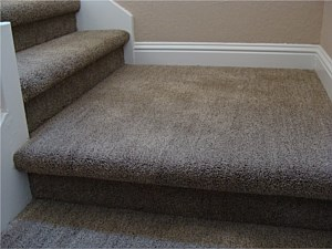 Carpet Projects